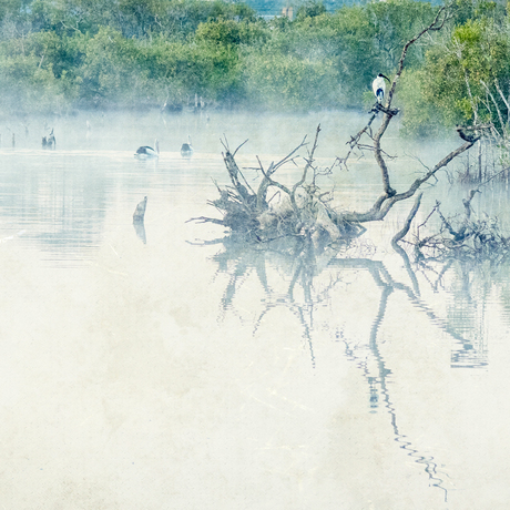 (CreativeWork) Daybreak Lagoon Ed. 2 of 50 by Shirley Steel. Photograph. Shop online at Bluethumb.