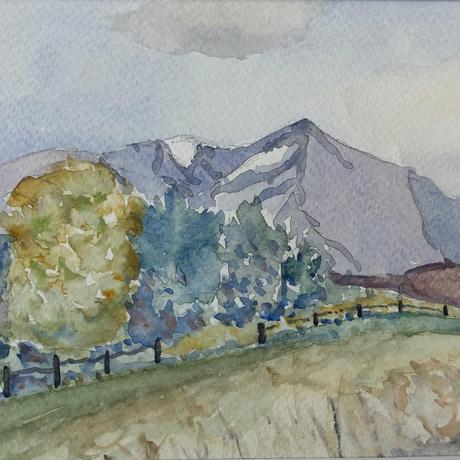 (CreativeWork) Spring Aoteoroa New Zealand by Amanda McLeod. Watercolour. Shop online at Bluethumb.