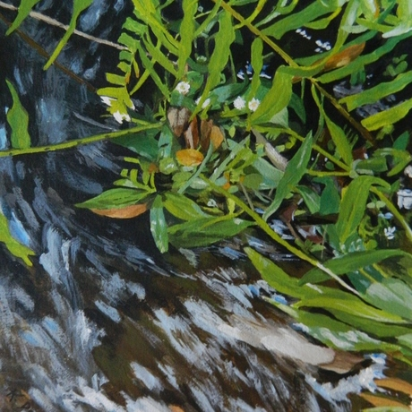 ferns and flowers in running water