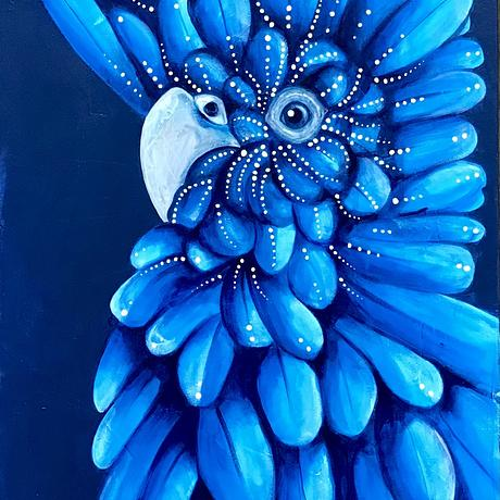 (CreativeWork) Sapphire Cockatoo by Kylee Rees. Acrylic. Shop online at Bluethumb.