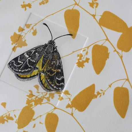 Black and yellow detailed moth etching printed onto etched golden background of abstract leaves.