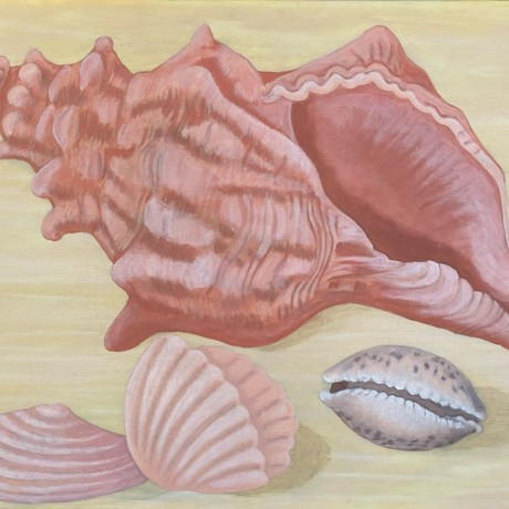 Four shells in shades of pink and apricot scattered on a sand colour background. One large  deep apricot conch shell toward the back. Two small, pink apricot clam shells in the foreground and one small, apricot cream, cowry shell to the side.