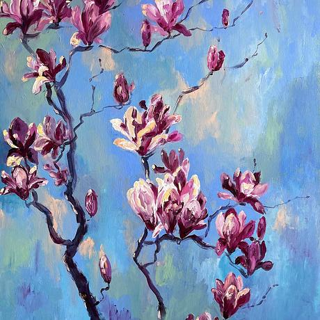 Spring revelations is capturing the blossoming magnolias reaching to the blue Sydney sky.