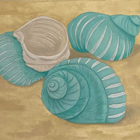 Three turbo bruneus shells (sea snail) in shades of teal green scattered on a sand colour background.