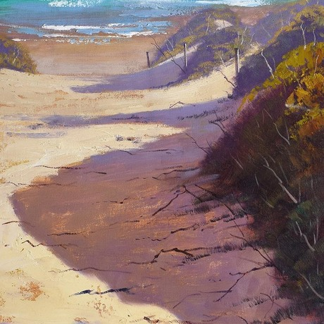 Coastal beach dunes
