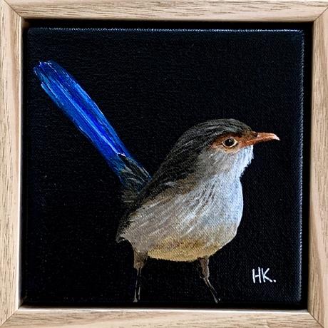 Little wren on tiny canvas framed in Tasmanian Oak