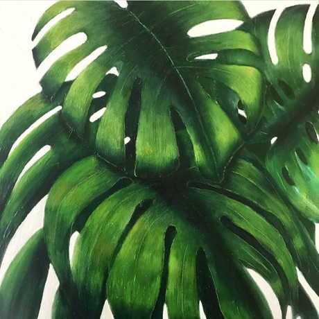(CreativeWork) Monstera by Trace Knowland. Oil. Shop online at Bluethumb.