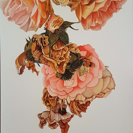 (CreativeWork) the rose by Claire Souter. Oil. Shop online at Bluethumb.