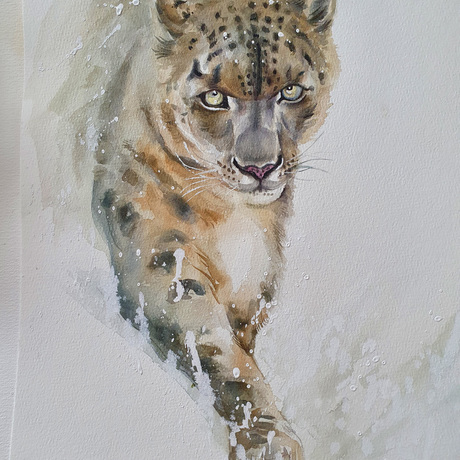 (CreativeWork) Snow Leopard by Yue Qi. Watercolour. Shop online at Bluethumb.