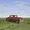 (CreativeWork) Dodge (framed) by Patricia Van Lubeck. Oil. Shop online at Bluethumb.