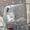 (CreativeWork) Little Grey Empty Paddocks by Alexandra Plim. Acrylic. Shop online at Bluethumb.