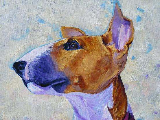 A young Bull Terrier sitting in the sand.