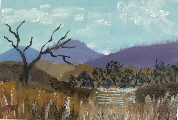 (CreativeWork) River View by Amanda McLeod. Oil. Shop online at Bluethumb.