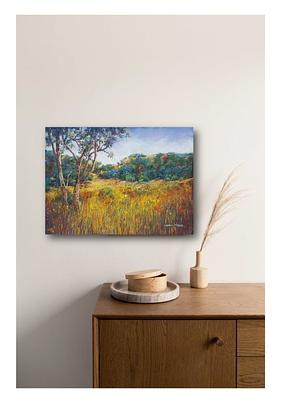 A field of Summer grasses leading to background hills.  A vibrant county landscape .