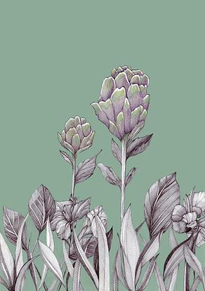 This is a beautiful fine art drawing of modern Artichoke flowers in a bed of Canna Lillies. It will bring a modern touch to any decor.