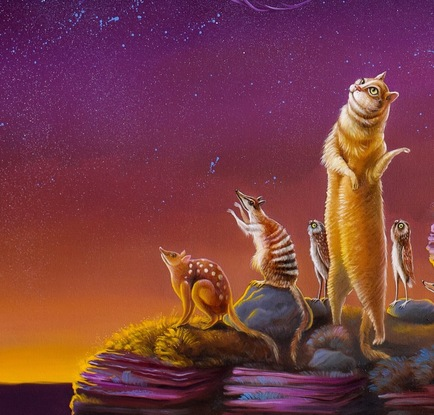 Cats and other animals looking up into night sky