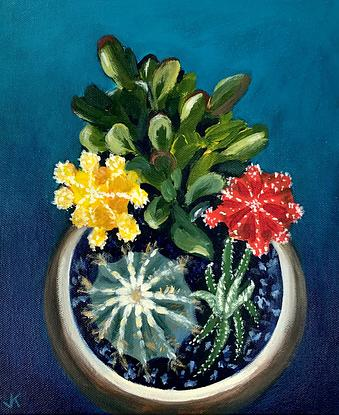 Cacti and succulents in a pot