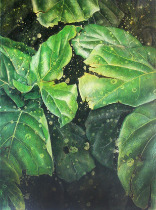 (CreativeWork) leaf #17 by Claire Souter. Oil. Shop online at Bluethumb.