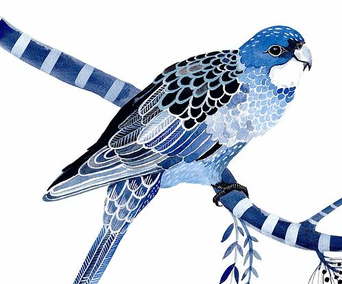 (CreativeWork) Indigo Rosellas and Native Flora Ed. 6 of 50 by Sally Browne. Reproduction Print. Shop online at Bluethumb.