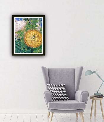 Artwork size - 57.4 X 71.4 X 0.1 cm Overall Size - Standard A1 large print - 59.4 x 84.1 x 0.1 cm ( border included) <br> Also in a standard A1 size, should be able to fit in any A1 size frame you have easily. LIMITED EDITION Giclée print on 310gsm textured paper. Unframed . All prints are individually signed , numbered, and comes with a certificate of authenticity. <br> Original artwork info: Come A Little Bit Closer - Banksia baxteri By HSIN LIN 05/02/2020 40.6 x 50.8 X 1.5 cm Acrylic on Acid free Gesso primed Canvas Ready to hang Side panel painted: Black <br> Affirmation – When in doubt, remember who you wanted to be. <br> Banksia baxteri, member of the family Proteaceae, have been said to look like a bird's nest, also known as 'Baxter's Banksia' and 'Bird's Nest Banksia'. It is endemic to Western Australia. Flowering occurs mid-Summer to Autumn continue until well into May. Banksia also symbolizes rebirth and new beginnings. <br> Geraldton wax (Chamelaucium uncinatum) is also a beautiful flowering Australian native shrub. The flowers have a sweet, honey fragrance, ooze nectar and are highly attractive to bees . The flowers also have a beautiful meaning as Happiness in Marriage. <br> Artwork inspired by nature in Bayswater, Melbourne, Victoria, Summer, 2020. -HSIN LIN <br> -Bloom like flowers Series 2020 by HSIN LIN- In this signature series of mine, flowers as the object represent life itself to me. Our own will to be alive, and the way we want to be alive. While I carefully paint these tiny flower petals, or built up those fine leaves' vines, it is like the way we try to figure out those uncertainty, furthermore, to be able to be closer to the truth a little bit more. <br> Enjoy the step by step time lapse video of this artwork please visit : https://youtu.be/qn-UEE1aWEY