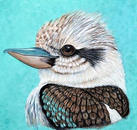Kookaburra on canvas